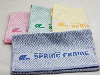 SpringFrame1.jpg
